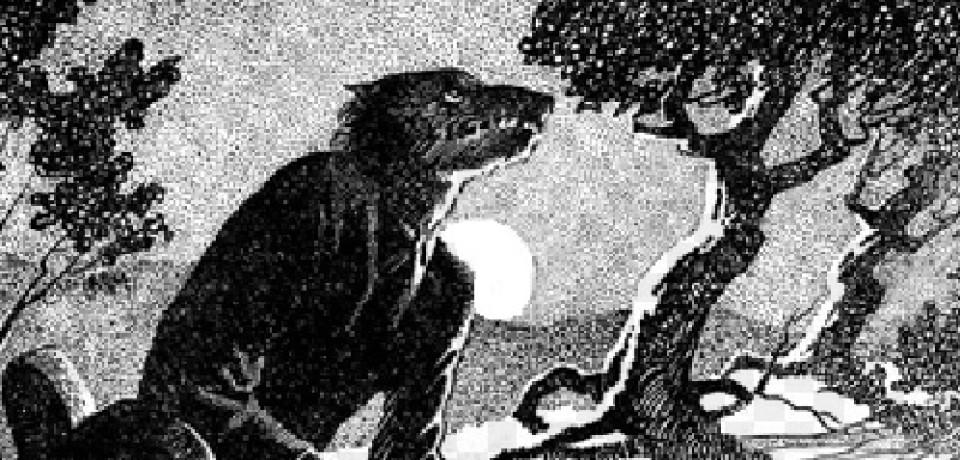 """""""Lobisomem: O Apocalipse"""" – a visão de Garra-das-Sombras (PARTE 3)"""